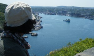 View of St. John's harbour from Signal Hill.