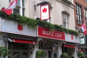 Th maple leaf